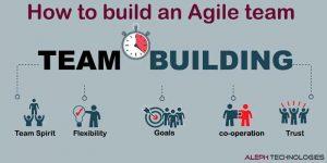 Agile team-Aleph global scum team